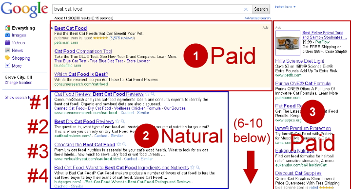 Google top 10 natural results